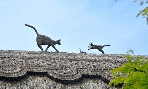 straw-store-cats-and-mice-01