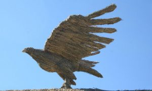 straw-store-eagle-01