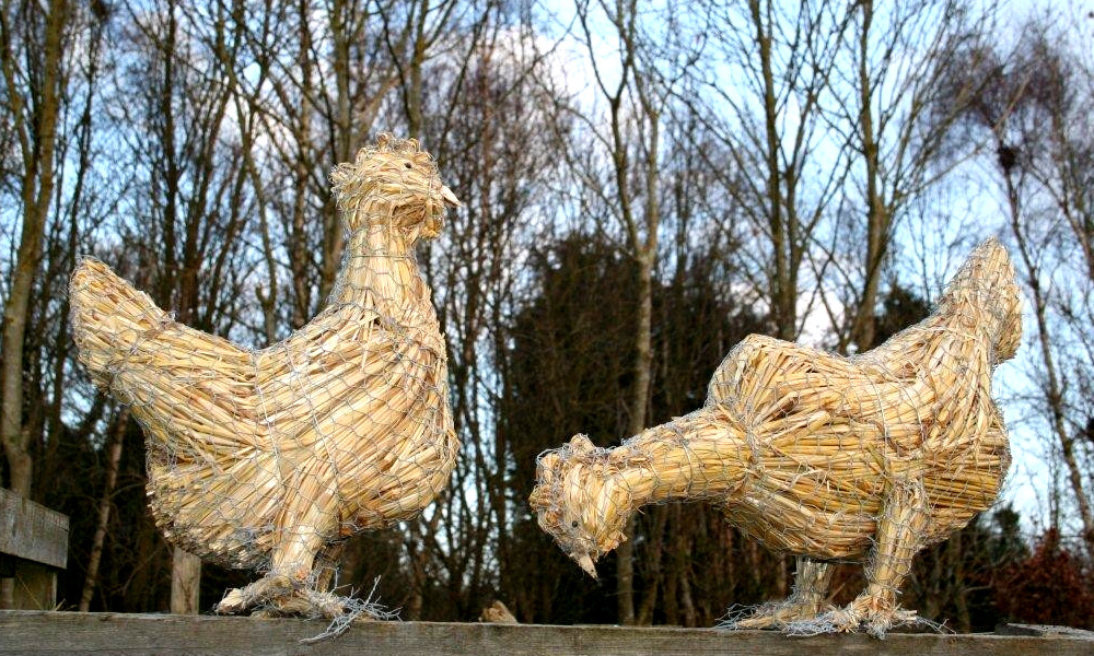 straw-store-hens-01