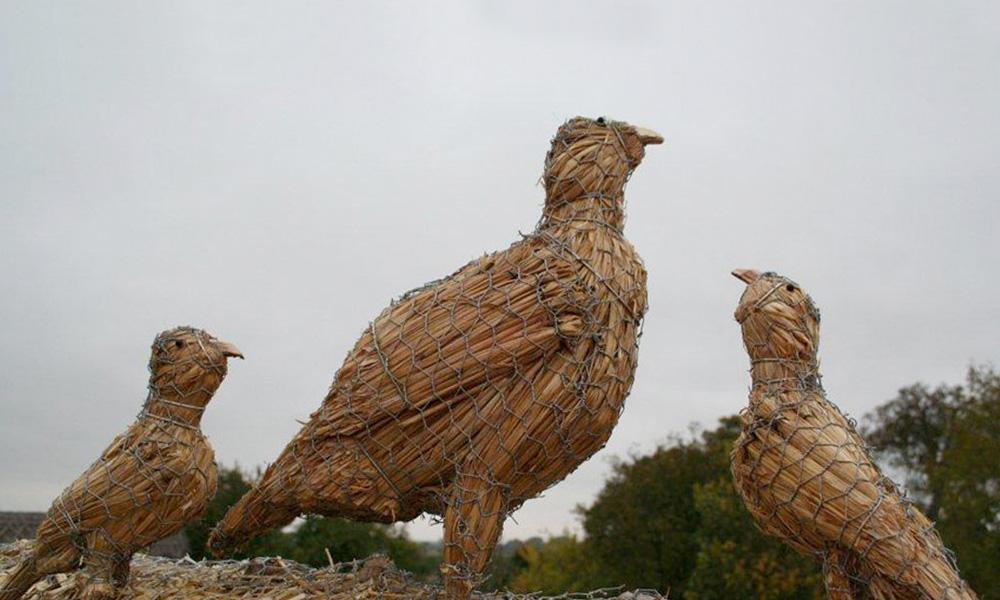 straw-store-partridges-01
