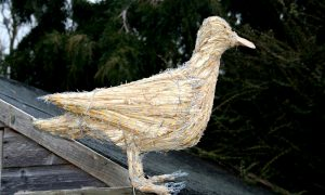 straw-store-seagull-01