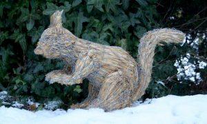 straw-store-squirrel-01