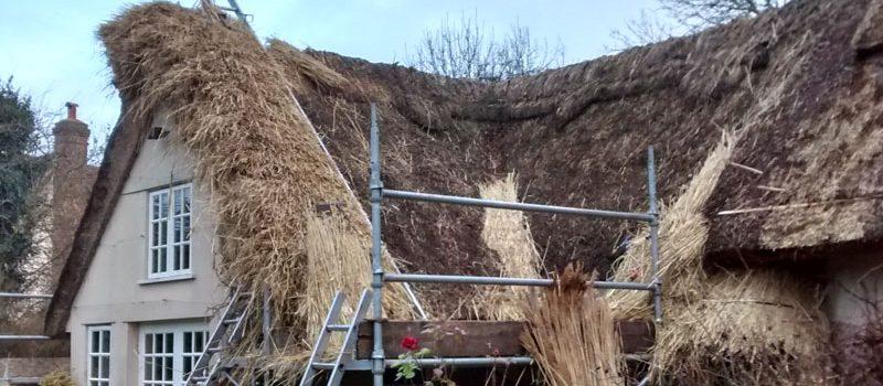 thatch-repairs-teaser